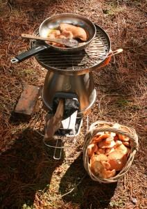 biolite woodstove mushroom