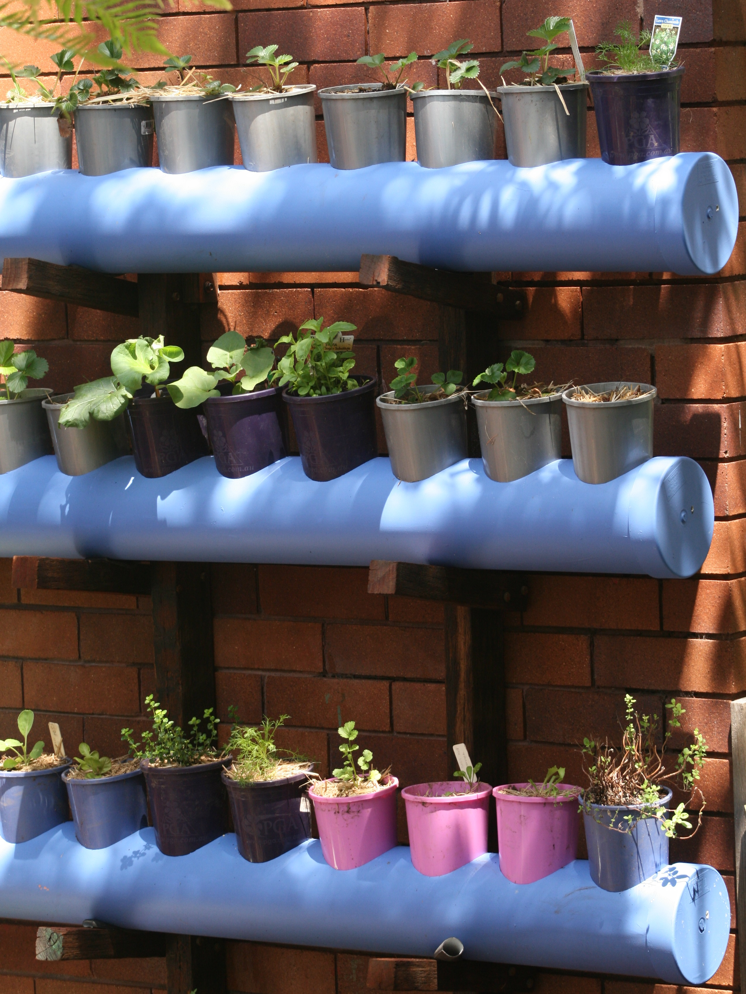 Hanging_polypipe_garden